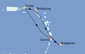 Itinerario de crucero Caribe del Este 8 días a bordo del Celebrity Millennium